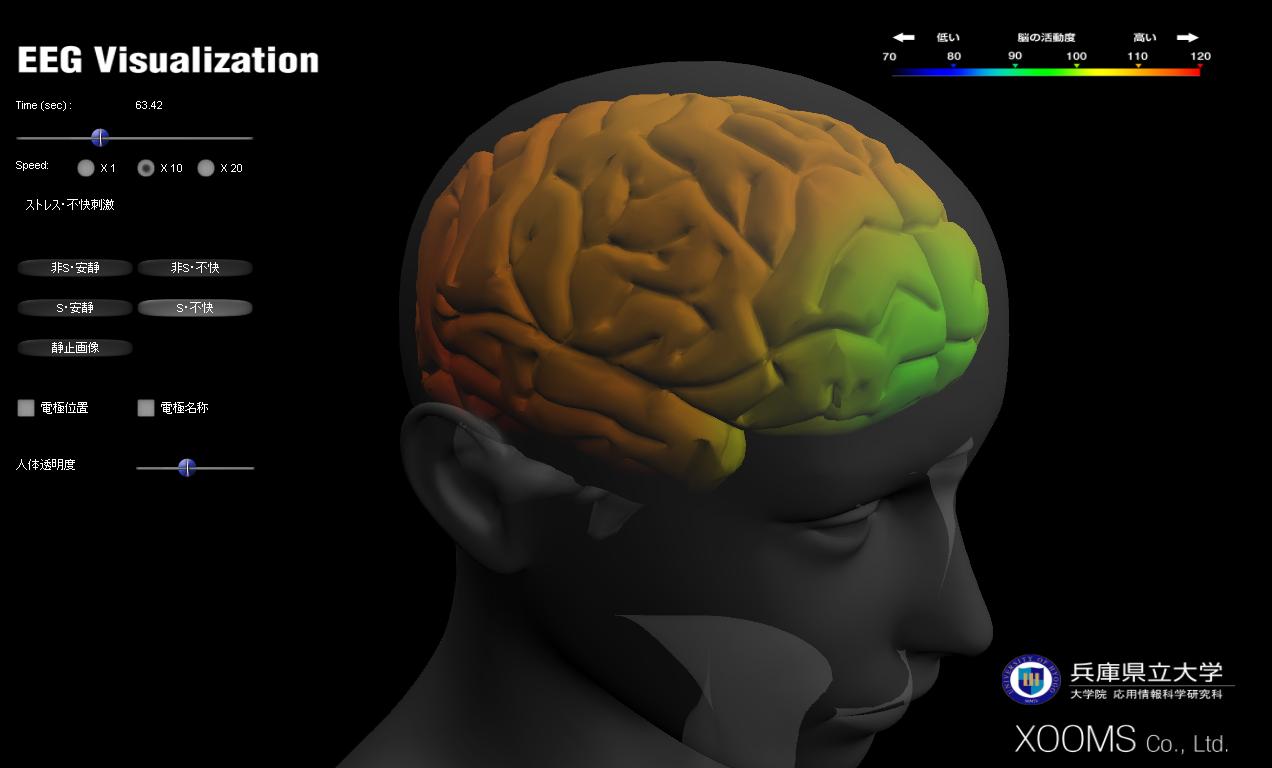 brainvis1