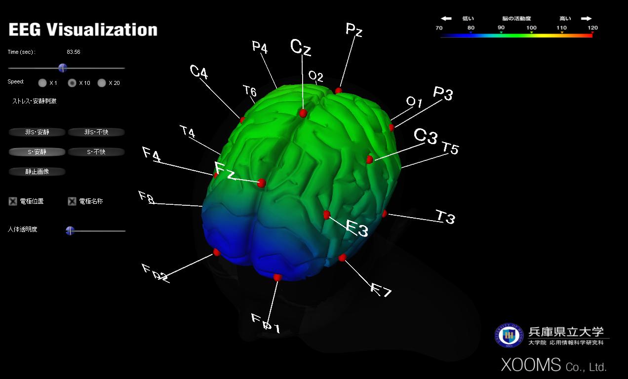 brainvis3